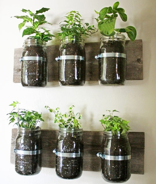 Exceptional ... Garden Design With How To Start Your Own Herb Garden With Plant  Diseases Images From Blog