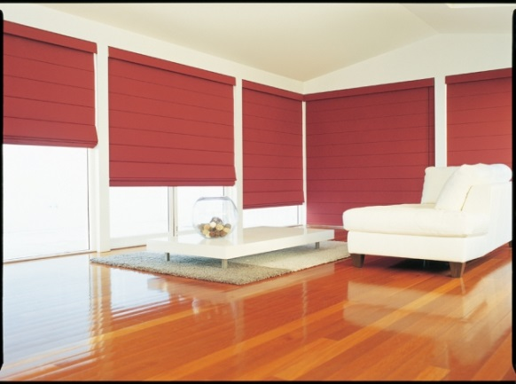 Roller shades might also be a good choice for you